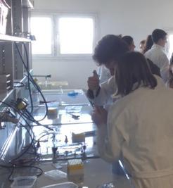 studenti del liceo classico in laboratorio